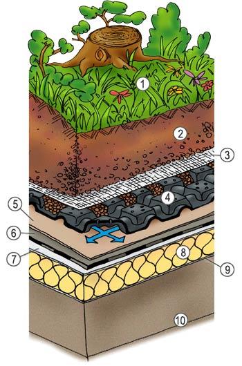 05 sistema intensivo a giardino pensile harpo spa for Sezione tetto giardino