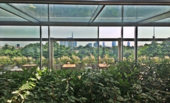 Terrazza Triennale Milano - intensivo ad orto pensile