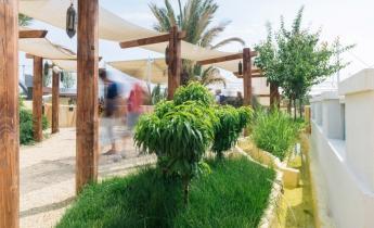 EXPO 2015 - Padiglione Oman - intensivo leggero