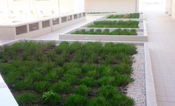 complesso residenziale - estensivo perenni - estensivo aromatiche - drenaggio continuo