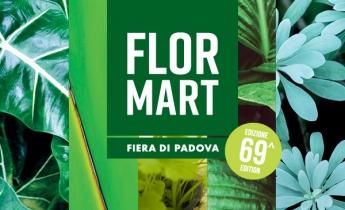 flormart 2018 - harpo verdepensile