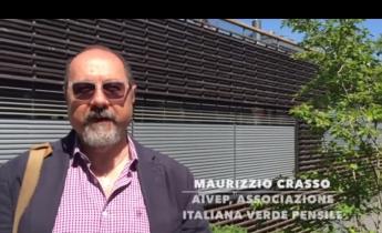 Harpo verdepensile | Urban green infrastructure
