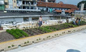 L'orto alto sul tetto del ristorante Le Fonderie Ozanam con i sistemi Harpo verdepensile