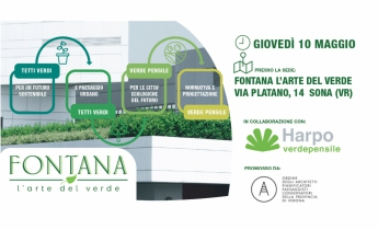 Harpo verdepensile | Convegno Verona 10.05.18