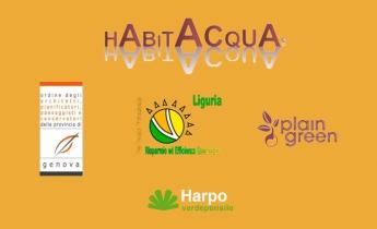 Harpo verdepensile_Habitacqua