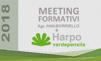 harpo verdepensile_meeting formativi