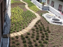 Verdepensile - Coperture o aree a verde fruibile - Harpo