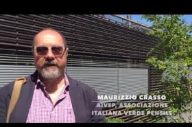 Harpo verdepensile   Urban green infrastructure